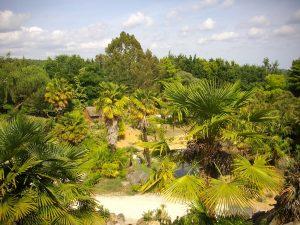 Parc tropical de Saint-Jacut-les-Pins